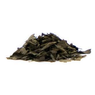 Salvia 15x Extrait
