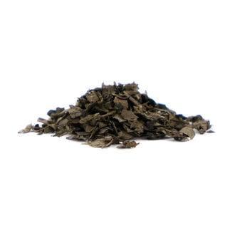 Salvia 40x Extrait