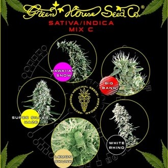 Sativa/Indica Mix C (Greenhouse Seeds) féminisée