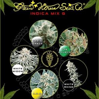 Indica Mix G (Greenhouse Seeds) féminisée