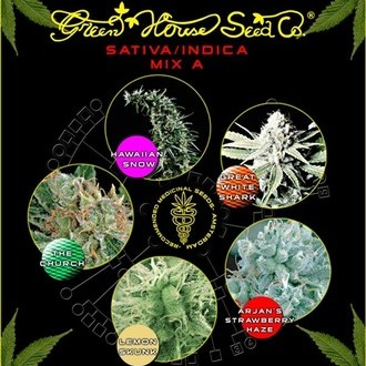 Sativa/Indica Mix A (Greenhouse Seeds) féminisée