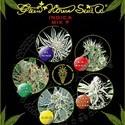 Indica Mix F (Greenhouse Seeds) féminisée