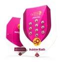 Bubble Kush (Royal Queen Seeds) féminisée