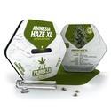 Amnesia Haze XL Autoflowering (Zambeza) féminisée