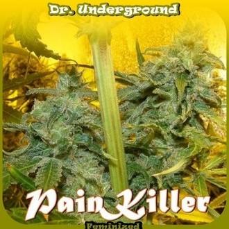 PainKiller (Dr. Underground) féminisée