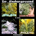 Killer Mix (Dr. Underground) féminisée