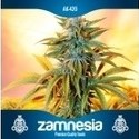 Graine gratuitement (Zamnesia Seeds) auto