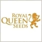 Graine gratuitement (Royal Queen Seeds)