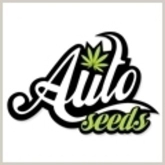 Graine gratuitement (Auto Seeds)