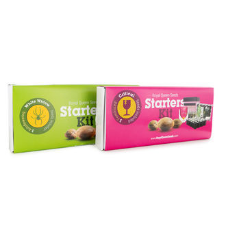 Starters Kit Royal Queen Seeds