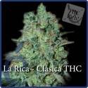 La Rica Classic THC (Elite Seeds) féminisée