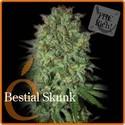 Bestial Skunk (Elite Seeds) féminisée