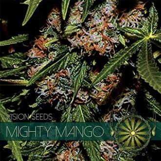 Mighty Mango Bud (Vision Seeds) Féminisée