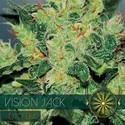 Vision Jack Autoflowering (Vision Seeds) Féminisée