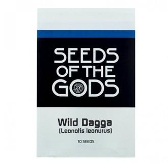 Wild Dagga (Leonotis leonurus) 10 Graines