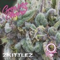 Zkittlez (Growers Choice) Féminisée