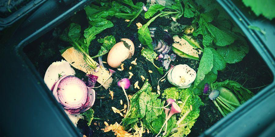 Comment Faire Son Propre Compost