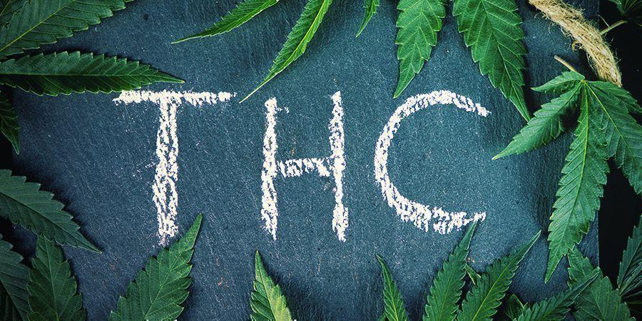 Quelle Est La Différence Entre Le Chanvre Et Le Cannabis?