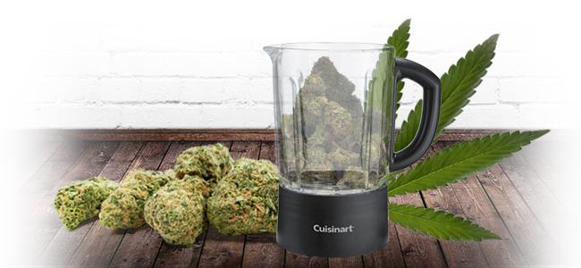 D'Effriter Le Cannabis: Au Mixeur