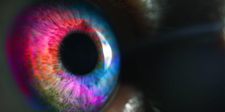 Expérience Psychédélique De Niveau Deux - Timothy Leary