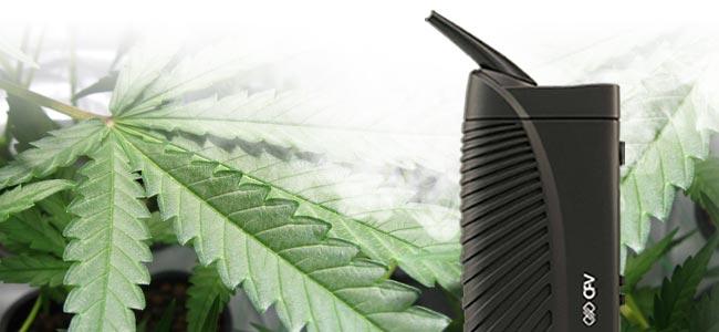 Fumer Du Cannabis Vaporisateur