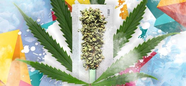 Spliff Tabac Cannabis