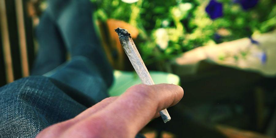 ÉCLATÉ/CUIT Cannabis