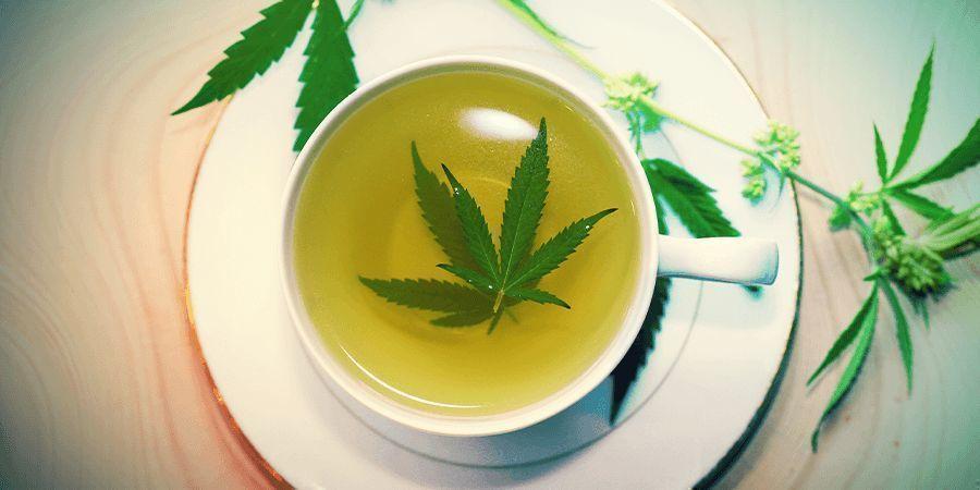 Tiges De Cannabis: The