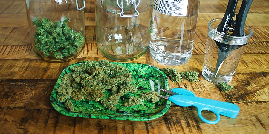 Comment Garder Propres les Ciseaux De Taille Du Cannabis