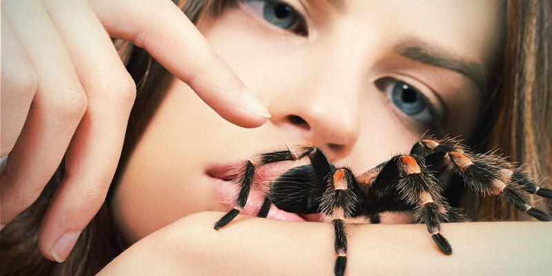 Différents Types d'Hallucinations : Hallucinations Tactiles