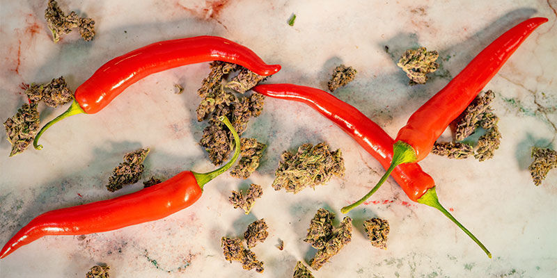 Le Cannabis Et Le Piment Ont-Ils Quoi Que Ce Soit en Commun ?