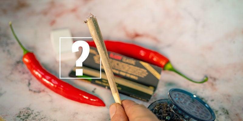 Piments Et Cannabis : Le Couple Parfait ?