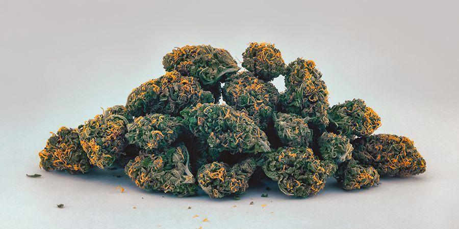 Jaune/Orange (Caroténoïdes) Têtes De Cannabis