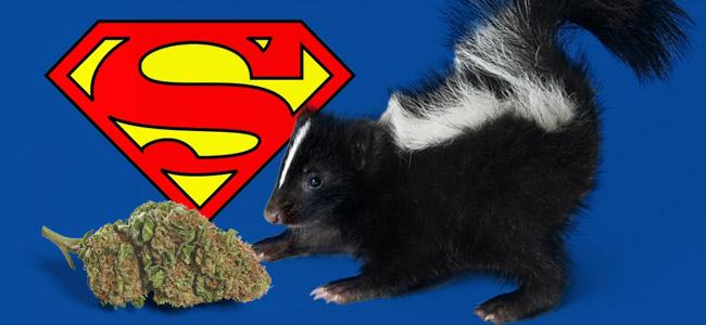 Super Skunk