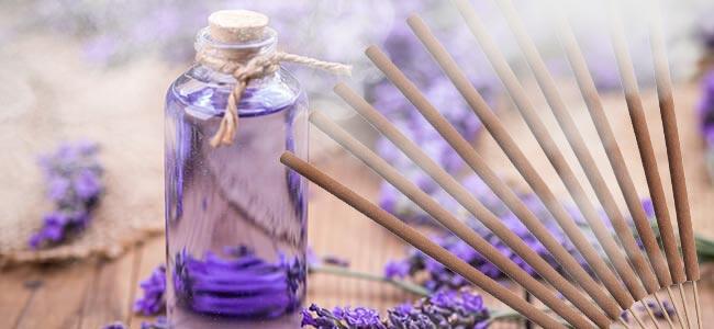 Lavende Pour La Relaxation Et Le Sommeil