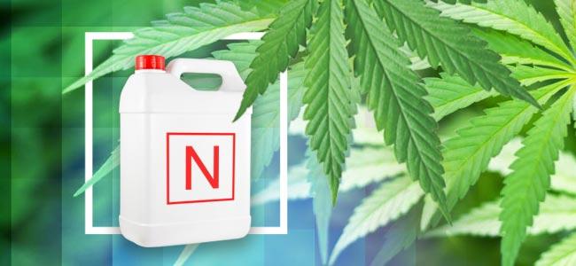 N IS FOR NITROGEN