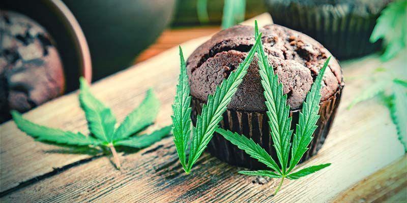 La Qualité Des Produits Comestibles Au Cannabis Achetés En Magasin Est Aléatoire