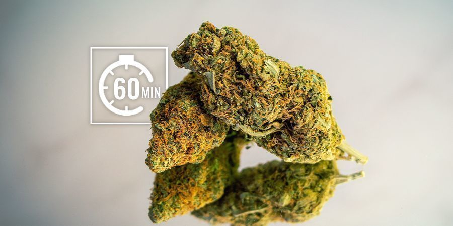 Réhydrater vos Têtes de Cannabis : Court-Terme (heures)