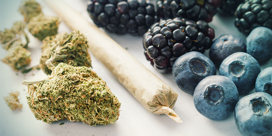 Amnesia: The High And Flavour
