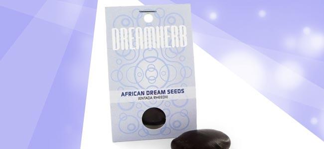 Graines de Rêve Africaines