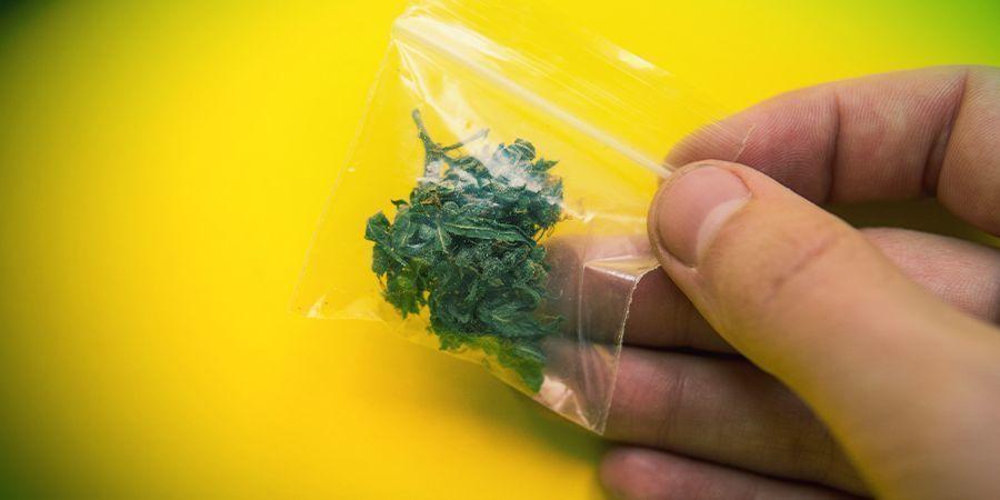 Conseils Pour Dissimuler L'odeur D'herbe En Public