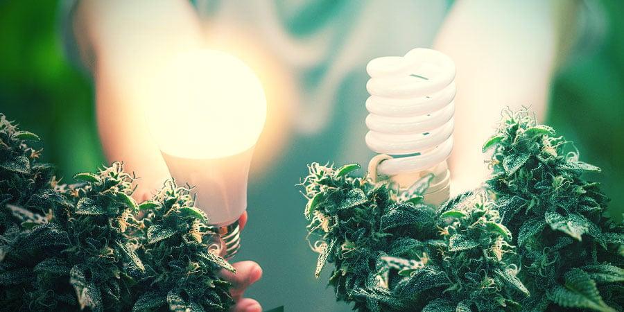 Technologie D'éclairage Avancée