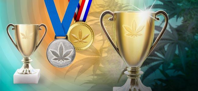 Cannabis Cups