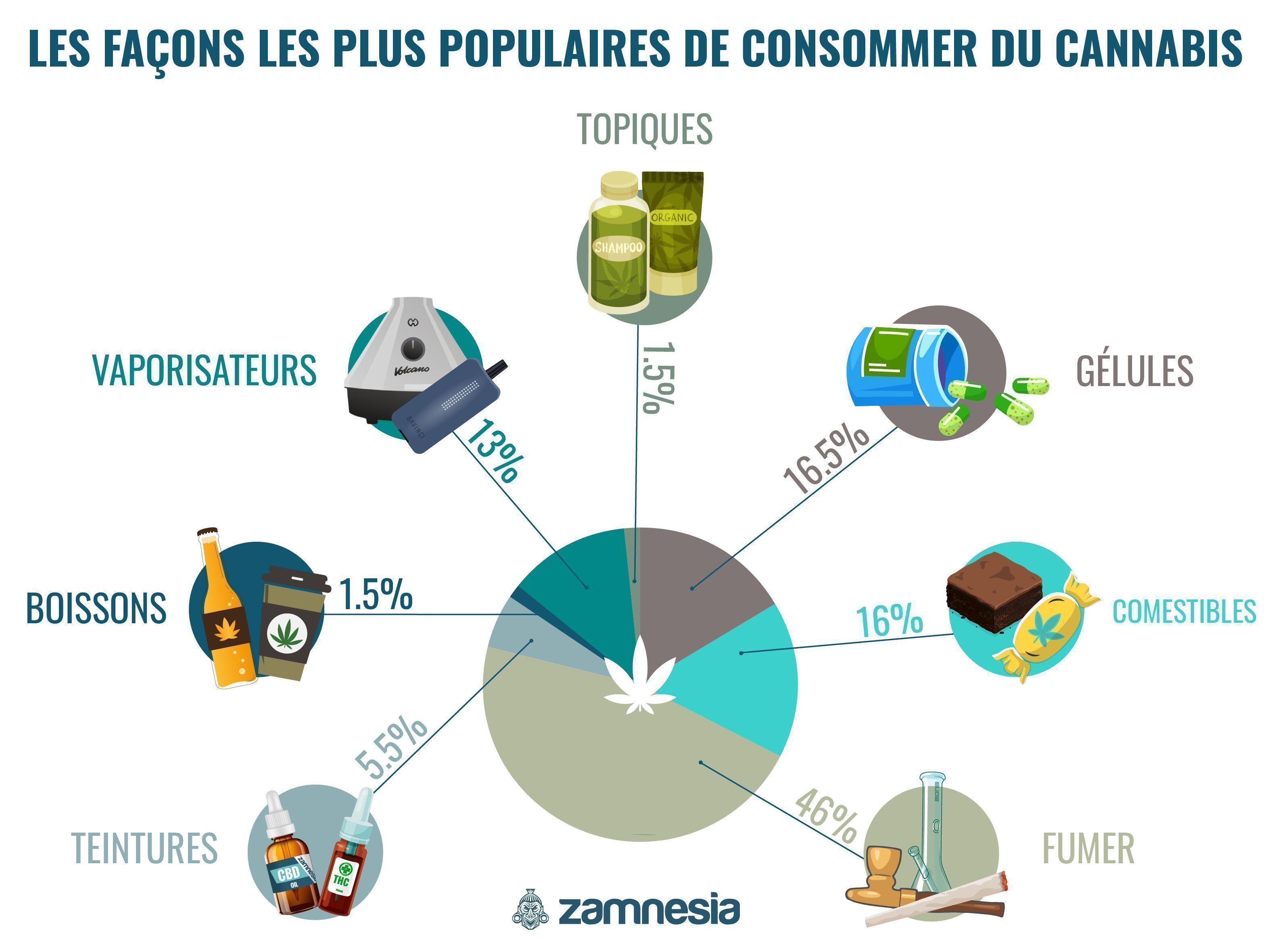 Les Méthodes De Consommation Du Cannabis Les Plus Populaires Infographic