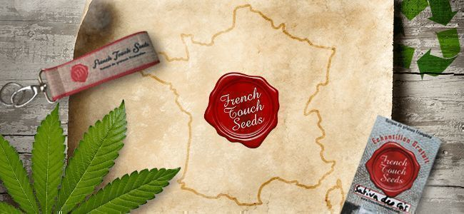 BANQUE DE GRAINES DU MOIS : FRENCH TOUCH SEEDS
