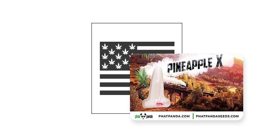 Pineapple X (Phat Panda)