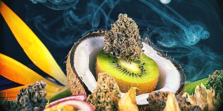 Des Variétés De Cannabis Savoureuses