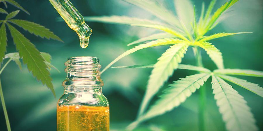 Le CBD Est Le Seul Composé Thérapeutique Du Chanvre/cannabis