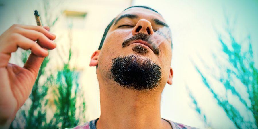 Prenez Part Au Movember