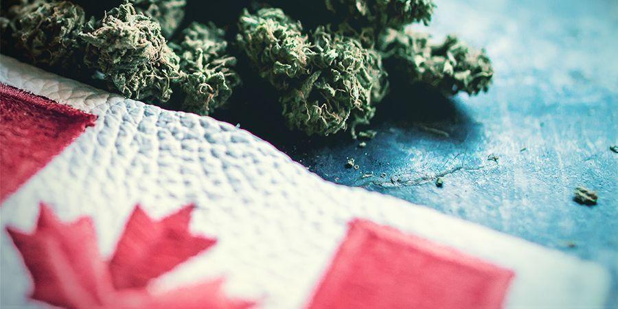 Le Cannabis Au Canada : La Route Est Encore Longue